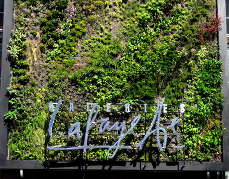 vertical gardens and living walls garden walls the daily green. Black Bedroom Furniture Sets. Home Design Ideas