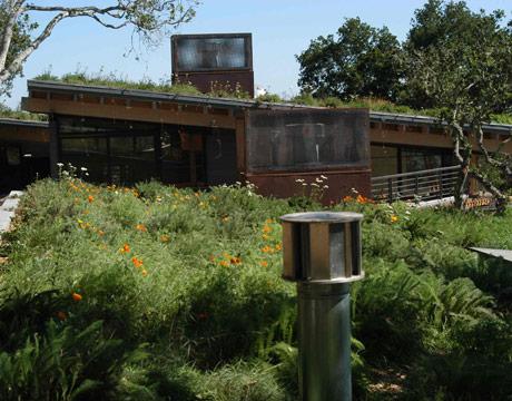 Green Roof On Feldman House, Saint Lucia Reserve, Carmel California