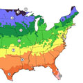 Check Your Hardiness Zone