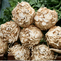 Recipe for celery root salad.
