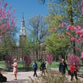 The Greenest Colleges and Universities